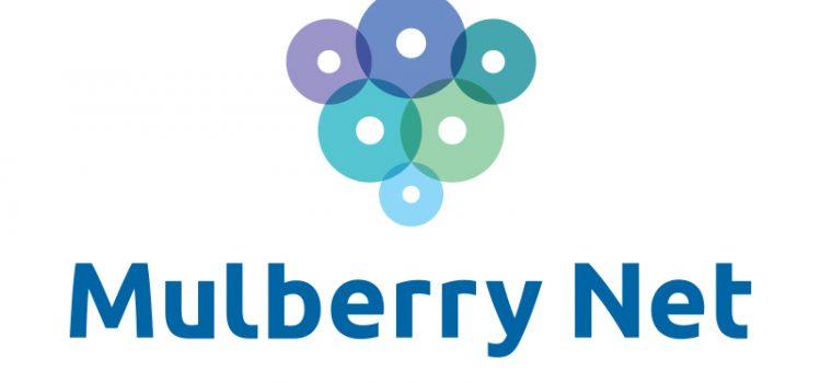Лого Mulberry Net